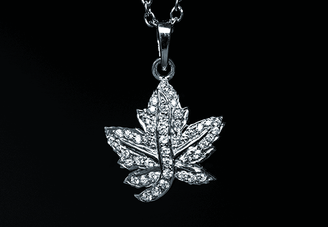 Canadian Brooch Coin Necklace - The Queen's favourite...